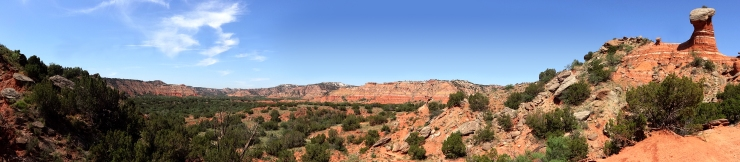 La Buena Vista del Palo Duro...roughly translated to The Good View of Hard Wood. :\